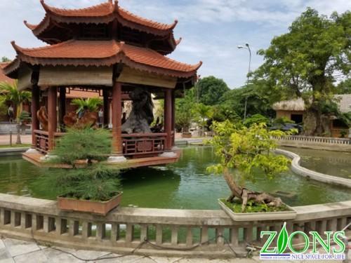Thi công hồ Koi Thanh Hóa