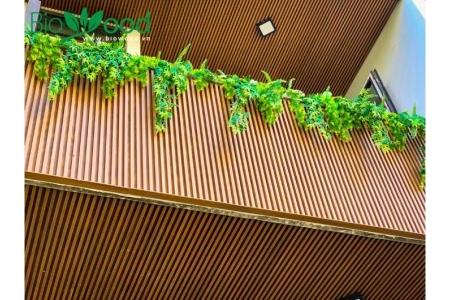 Ốp tường gỗ Biowood