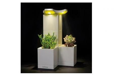 Chậu trồng cây thông minh tích hợp đèn Led Legrow