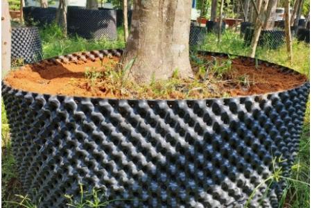Bầu Nhựa Ươm Rễ Cây Ro-Pot