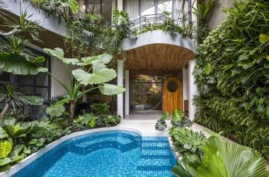 Mang cả 'khu rừng nhiệt đới' vào tổ ấm